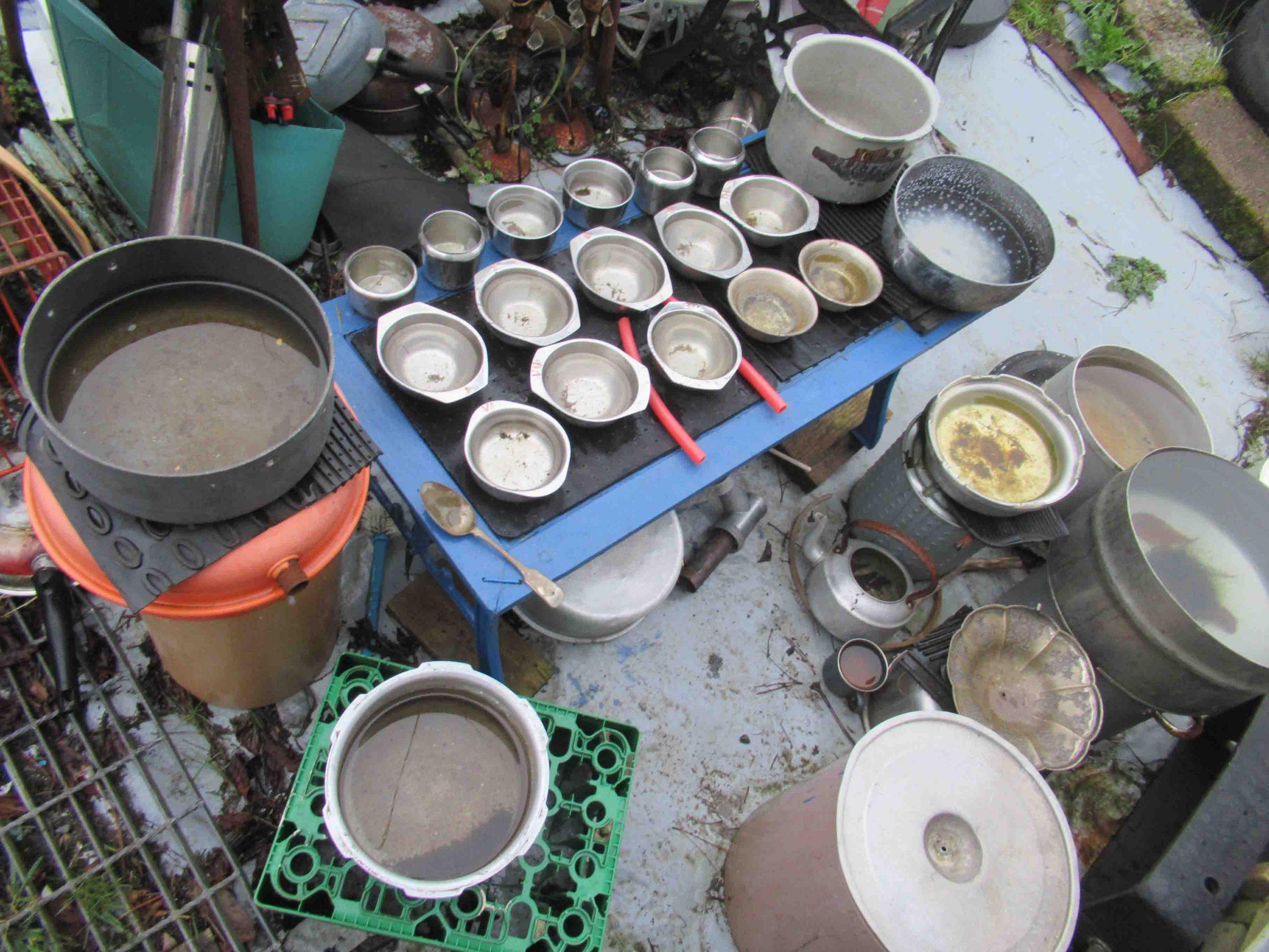 Dessert Bowls - Water Tuned